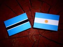 Σημαία της Μποτσουάνα με την αργεντινή σημαία σε ένα κολόβωμα δέντρων που απομονώνεται Στοκ Εικόνες