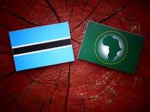 Σημαία της Μποτσουάνα με την αφρικανική σημαία ένωσης σε ένα κολόβωμα δέντρων Στοκ εικόνες με δικαίωμα ελεύθερης χρήσης