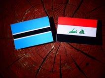 Σημαία της Μποτσουάνα με την ιρακινή σημαία σε ένα κολόβωμα δέντρων που απομονώνεται Στοκ εικόνες με δικαίωμα ελεύθερης χρήσης