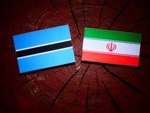 Σημαία της Μποτσουάνα με την ιρανική σημαία σε ένα κολόβωμα δέντρων που απομονώνεται Στοκ φωτογραφία με δικαίωμα ελεύθερης χρήσης