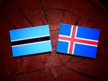 Σημαία της Μποτσουάνα με την ισλανδική σημαία σε ένα κολόβωμα δέντρων που απομονώνεται Στοκ εικόνες με δικαίωμα ελεύθερης χρήσης