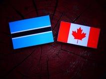 Σημαία της Μποτσουάνα με την καναδική σημαία σε ένα κολόβωμα δέντρων που απομονώνεται Στοκ φωτογραφία με δικαίωμα ελεύθερης χρήσης