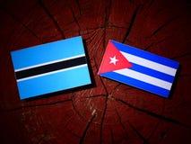 Σημαία της Μποτσουάνα με την κουβανική σημαία σε ένα κολόβωμα δέντρων που απομονώνεται Στοκ Εικόνες