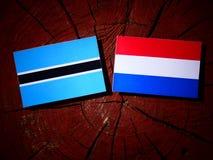 Σημαία της Μποτσουάνα με την ολλανδική σημαία σε ένα κολόβωμα δέντρων που απομονώνεται Στοκ φωτογραφία με δικαίωμα ελεύθερης χρήσης