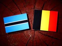 Σημαία της Μποτσουάνα με τη βελγική σημαία σε ένα κολόβωμα δέντρων που απομονώνεται Στοκ φωτογραφίες με δικαίωμα ελεύθερης χρήσης