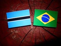 Σημαία της Μποτσουάνα με τη βραζιλιάνα σημαία σε ένα κολόβωμα δέντρων που απομονώνεται Στοκ εικόνα με δικαίωμα ελεύθερης χρήσης
