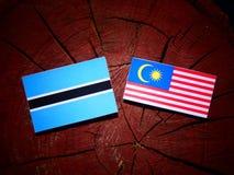 Σημαία της Μποτσουάνα με τη μαλαισιανή σημαία σε ένα κολόβωμα δέντρων που απομονώνεται Στοκ Εικόνες