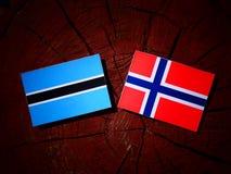 Σημαία της Μποτσουάνα με τη νορβηγική σημαία σε ένα κολόβωμα δέντρων που απομονώνεται Στοκ φωτογραφία με δικαίωμα ελεύθερης χρήσης