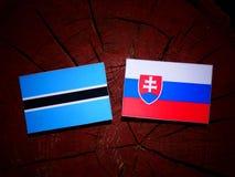 Σημαία της Μποτσουάνα με τη σλοβάκικη σημαία σε ένα κολόβωμα δέντρων που απομονώνεται Στοκ εικόνες με δικαίωμα ελεύθερης χρήσης