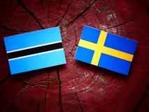 Σημαία της Μποτσουάνα με τη σουηδική σημαία σε ένα κολόβωμα δέντρων Στοκ Εικόνες