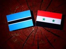 Σημαία της Μποτσουάνα με τη συριακή σημαία σε ένα κολόβωμα δέντρων Στοκ φωτογραφίες με δικαίωμα ελεύθερης χρήσης