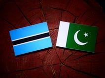 Σημαία της Μποτσουάνα με τη σημαία του Πακιστάν σε ένα κολόβωμα δέντρων που απομονώνεται Στοκ φωτογραφία με δικαίωμα ελεύθερης χρήσης