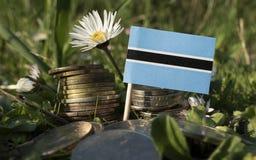 Σημαία της Μποτσουάνα με το σωρό των νομισμάτων χρημάτων με τη χλόη Στοκ Φωτογραφίες