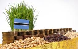 Σημαία της Μποτσουάνα που κυματίζει με το σωρό των νομισμάτων χρημάτων και τους σωρούς των σπόρων Στοκ φωτογραφίες με δικαίωμα ελεύθερης χρήσης