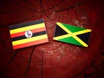 Σημαία της Ουγκάντας με την τζαμαϊκανή σημαία σε ένα κολόβωμα δέντρων Στοκ Εικόνες