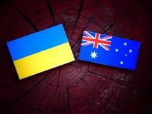 Σημαία της Ουκρανίας με την αυστραλιανή σημαία σε ένα κολόβωμα δέντρων που απομονώνεται Στοκ Εικόνες