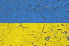 Σημαία της Ουκρανίας που χρωματίζεται στο ραγισμένο βρώμικο τοίχο Εθνικό σχέδιο στην εκλεκτής ποιότητας επιφάνεια ύφους ελεύθερη απεικόνιση δικαιώματος