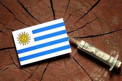 Σημαία της Ουρουγουάης σε ένα κολόβωμα με τη σύριγγα που εγχέει τα χρήματα Στοκ Εικόνες