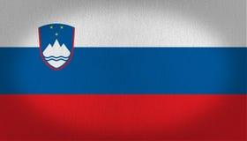 Σημαία της Σλοβενίας Στοκ εικόνα με δικαίωμα ελεύθερης χρήσης