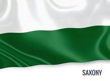 Σημαία του γερμανικού κράτους Σαξωνία που κυματίζει σε ένα απομονωμένο άσπρο υπόβαθρο Στοκ Εικόνες