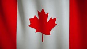 Σημαία του Καναδά που κυματίζει στον αέρα απόθεμα βίντεο