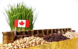 Σημαία του Καναδά που κυματίζει με το σωρό των νομισμάτων χρημάτων και τους σωρούς του σίτου στοκ φωτογραφίες