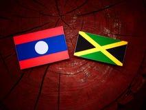 Σημαία του Λάος με την τζαμαϊκανή σημαία σε ένα κολόβωμα δέντρων Στοκ Φωτογραφίες