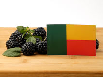 Σημαία του Μπενίν σε μια ξύλινη επιτροπή με τα βατόμουρα που απομονώνεται σε ένα whi στοκ φωτογραφίες με δικαίωμα ελεύθερης χρήσης