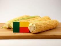 Σημαία του Μπενίν σε μια ξύλινη επιτροπή με το καλαμπόκι που απομονώνεται σε ένα άσπρο backg στοκ φωτογραφίες