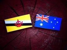 Σημαία του Μπρουνέι με την αυστραλιανή σημαία σε ένα κολόβωμα δέντρων που απομονώνεται Στοκ φωτογραφία με δικαίωμα ελεύθερης χρήσης