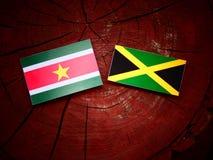 Σημαία του Σουρινάμ με την τζαμαϊκανή σημαία σε ένα κολόβωμα δέντρων Στοκ Εικόνες