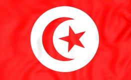 σημαία Τυνησία διανυσματική απεικόνιση