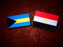 Σημαία των Μπαχαμών με την αιγυπτιακή σημαία σε ένα κολόβωμα δέντρων Στοκ εικόνες με δικαίωμα ελεύθερης χρήσης