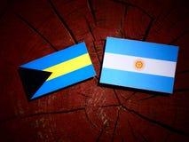 Σημαία των Μπαχαμών με την αργεντινή σημαία σε ένα κολόβωμα δέντρων Στοκ φωτογραφίες με δικαίωμα ελεύθερης χρήσης