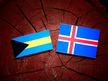 Σημαία των Μπαχαμών με την ισλανδική σημαία σε ένα κολόβωμα δέντρων που απομονώνεται Στοκ Εικόνες