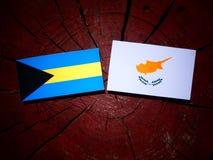 Σημαία των Μπαχαμών με την κυπριακή σημαία σε ένα κολόβωμα δέντρων που απομονώνεται Στοκ εικόνες με δικαίωμα ελεύθερης χρήσης