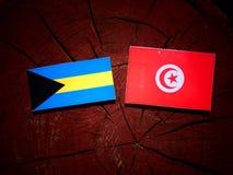 Σημαία των Μπαχαμών με την τυνησιακή σημαία σε ένα κολόβωμα δέντρων που απομονώνεται Στοκ φωτογραφίες με δικαίωμα ελεύθερης χρήσης