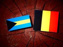 Σημαία των Μπαχαμών με τη βελγική σημαία σε ένα κολόβωμα δέντρων που απομονώνεται Στοκ εικόνα με δικαίωμα ελεύθερης χρήσης