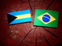 Σημαία των Μπαχαμών με τη βραζιλιάνα σημαία σε ένα κολόβωμα δέντρων που απομονώνεται Στοκ φωτογραφία με δικαίωμα ελεύθερης χρήσης
