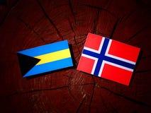 Σημαία των Μπαχαμών με τη νορβηγική σημαία σε ένα κολόβωμα δέντρων που απομονώνεται Στοκ Εικόνες