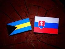 Σημαία των Μπαχαμών με τη σλοβάκικη σημαία σε ένα κολόβωμα δέντρων που απομονώνεται Στοκ Φωτογραφίες
