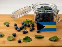 Σημαία των Μπαχαμών σε μια ξύλινη σανίδα με τα βακκίνια στο μόριο Στοκ φωτογραφία με δικαίωμα ελεύθερης χρήσης