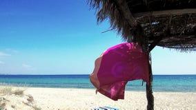 Σημαία χρώματος στην ελληνική παραλία απόθεμα βίντεο