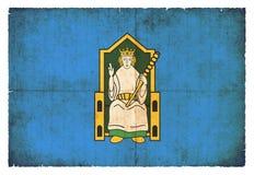 Σημαία Grunge Leinster Ιρλανδία Στοκ εικόνες με δικαίωμα ελεύθερης χρήσης