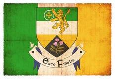 Σημαία Grunge Offaly Ιρλανδία Στοκ Εικόνα