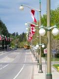 Σημαίες στο Drive του Σάσσεξ Στοκ Φωτογραφία