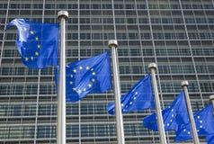 Σημαίες της ΕΕ Στοκ εικόνα με δικαίωμα ελεύθερης χρήσης