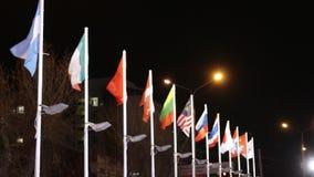 Σημαίες των διαφορετικών χωρών στον αέρα στη χειμερινή νύχτα στην πόλη απόθεμα βίντεο
