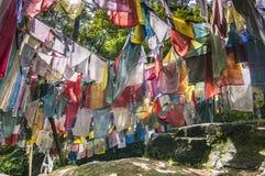 Σημαίες Longta, άλογο αέρα, κοιλάδα Bumthang, Μπουτάν προσευχής στοκ φωτογραφία