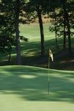 σημαιοστολίστε golfcourse Στοκ Εικόνα